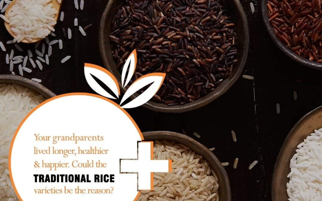 Introducing Native Rices